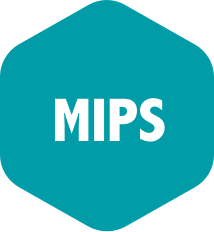 Track MIPS Assembly