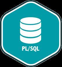 Track PL/SQL