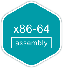 Track x86-64 Assembly